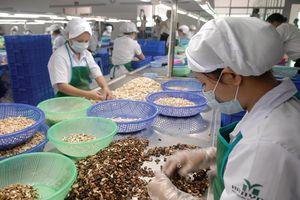 Nông sản Việt chốt thêm đơn hàng sang châu Âu