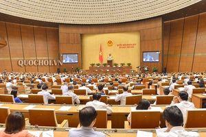 Vào CPTPP: Công đoàn phải đối mặt với những thách thức chưa có tiền lệ