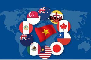 Việt Nam hưởng lợi nhiều thứ nhì từ CPTPP trong 11 nước thành viên
