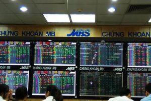 Chứng khoán ngày 5/11: VN - Index may mắn giữ sắc xanh