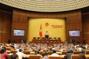 Đại biểu Quốc hội đồng tình với việc phê chuẩn Hiệp định CPTPP
