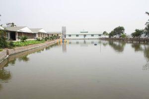 Hà Nội: Cho phép HTX Hoàng Long xả nước thải vào nguồn nước