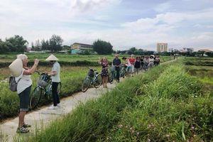 Quảng Nam: Tổ chức giải thưởng tôn vinh Doanh nghiệp kinh doanh trong lĩnh vực du lịch, dịch vụ