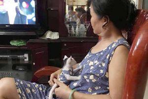Bức ảnh bà ngoại mặc đồ đôi với mèo cưng khiến cháu gái lẫn dân mạng 'phát hờn'