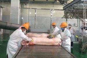 Thịt mát là xu thế tất yếu của một nền tiêu thụ văn minh
