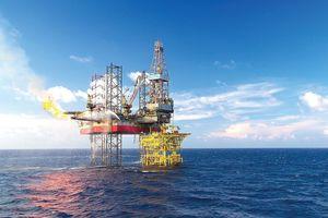 Khoan và dịch vụ khoan Dầu khí (PVD): Quý III lãi 112 tỷ đồng