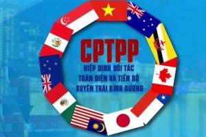 Tham gia Hiệp định CPTPP: Đừng để 'nước đến bụng mới nhảy…'