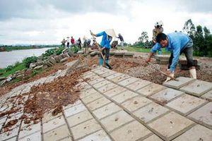 Hà Nội: Đầu tư cải tạo, sửa chữa kè Linh Chiểu