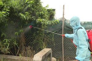 Phú Yên ra quân dập dịch cúm gia cầm