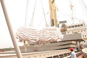 10 điểm mới về kinh doanh xuất khẩu gạo