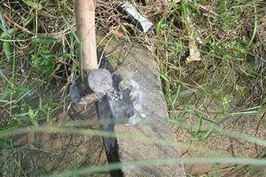 Sự thật vụ thanh giằng kênh mương 'bê tông cốt gỗ' ở Bình Định?