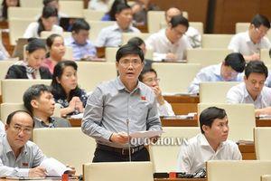 Cả thế giới chỉ Việt Nam có trường đại học trong đại học