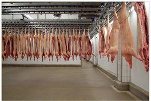 Cần có lộ trình đưa thịt mát đến tay người tiêu dùng