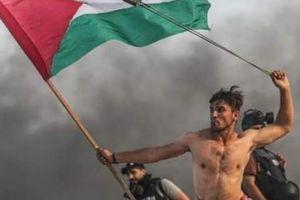 'Phượng hoàng Gaza' của người Palestine bị Israel bắn trúng