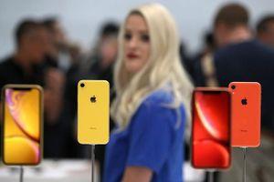 Doanh số iPhone Xr chậm chạp 'gieo sầu' cho Apple