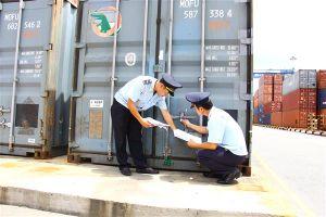 Bà Rịa- Vũng Tàu: Gần 340 container phế liệu nhựa tồn tại cảng