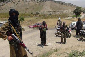Taliban xác nhận sẽ tới dự hòa đàm tại Nga
