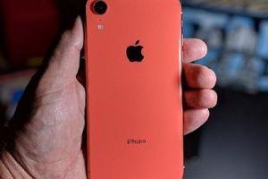 Người dùng không mặn mà với phiên bản iPhone 'giá rẻ'