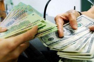 Vụ đổi 100 USD bị phạt ở Cần Thơ: Cần đảm bảo môi trường kinh doanh lành mạnh