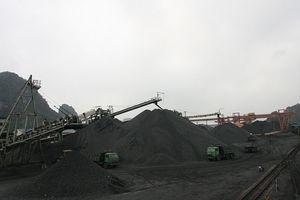 TKV đẩy nhanh tiến độ các dự án đầu tư sàng - tuyển than