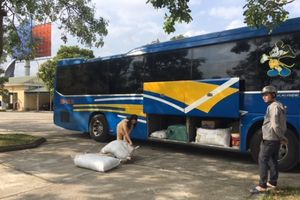 Thanh Hóa: CSGT bắt xe trở hàng trăm kg bì lợn bẩn