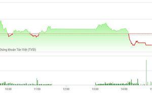 Chứng khoán chiều 6/11: Xả bất ngờ, cổ phiếu ngân hàng lao dốc