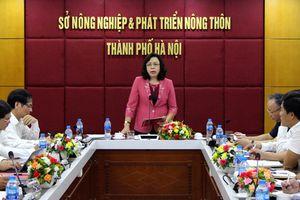 Sở Nông nghiệp và Phát triển nông thôn Hà Nội giảm 11 đầu mối sau sắp xếp tổ chức bộ máy