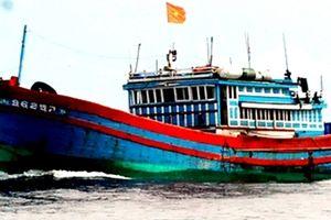 Thí điểm lắp đặt thiết bị quản lý tàu thuyền cho tàu cá xa bờ