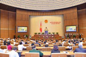 Quốc hội nghe báo cáo giải trình, tiếp thu, chỉnh lý dự án Luật Đặc xá (sửa đổi)