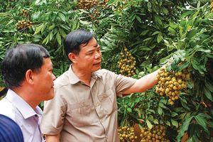 Khi Bộ trưởng, Chủ tịch tỉnh tiếp thị nông sản