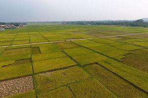 Dự án đại lộ Đông - Tây tạo 'cú hích' hạ tầng cho tỉnh Thái Nguyên
