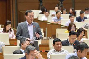 Đại biểu Quốc hội: Cần giảm bớt tần suất đặc xá