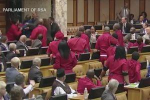 Nghị sĩ Nam Phi lao vào ẩu đả tại cuộc họp Quốc hội