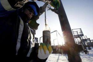 Giá dầu châu Á giảm trước tình hình nguồn cung dồi dào