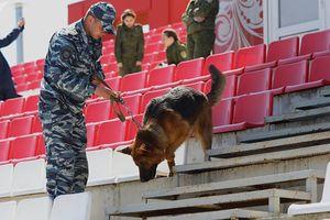 An ninh Nga hé lộ âm mưu khủng bố tại VCK World Cup 2018
