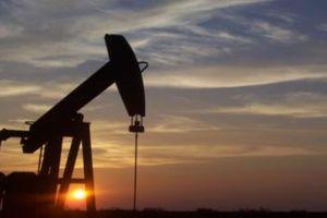 Giá dầu Brent chạm đáy kể từ ngày 16/8
