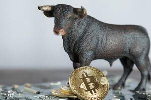 Giá Bitcoin hôm nay 7/11: Vì sao Bitcoin sẽ tăng lên 20.000 USD vào năm 2019?