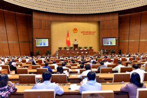 Quốc hội nghe báo cáo về dự thảo Luật Quản lý thuế (sửa đổi)
