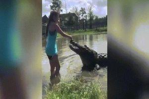Kinh ngạc cảnh cô gái tay không cho cá sấu khổng lồ ăn