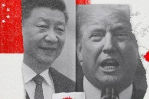 Mỹ: 'Làn sóng xanh' quá 'hiền', không cứu được Trung Quốc