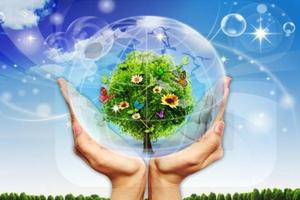 Doanh nghiệp Việt Nam vẫn coi nhẹ phát triển bền vững