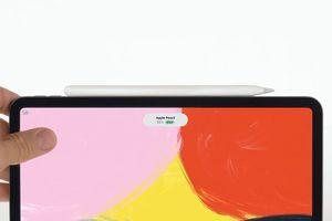 Apple Pencil của iPad Pro 2018 không thể sạc bằng chuẩn Qi
