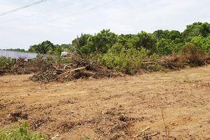 Phó thủ tướng chỉ đạo xử lý vi phạm đất đai ở Phú Quốc