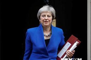 Thủ tướng Anh 'thuê' các doanh nhân kỳ cựu làm cố vấn về Brexit