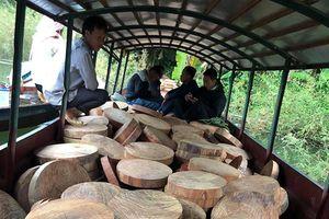 Bắt đối tượng vận chuyển trái phép 830 thớt gỗ nghiến trên sông Đà