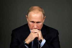 Hậu bầu cử giữa kỳ Mỹ: Ông Trump 'buồn', Tổng thống Putin cũng 'kém vui'?