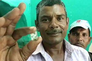 Ba đời nối tiếp nhau đào được viên kim cương 8 tỷ đồng