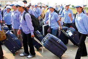 Đài Loan vẫn hấp dẫn cho lao động Việt Nam
