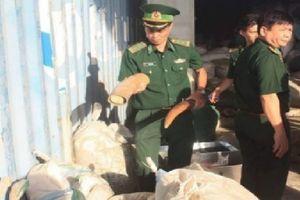 Đà Nẵng: Đã xác định được nghi phạm buôn lậu ngà voi, vảy tê tê tại Cảng Tiên Sa