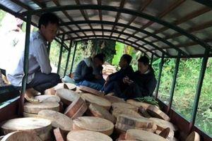 Bắt đối tượng vận chuyển hơn 830 thớt gỗ nghiến trên sông Đà